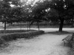 Chrzanów 1973 - widok na ul. Śląską z parku