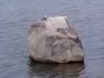 Kamień Pomorski