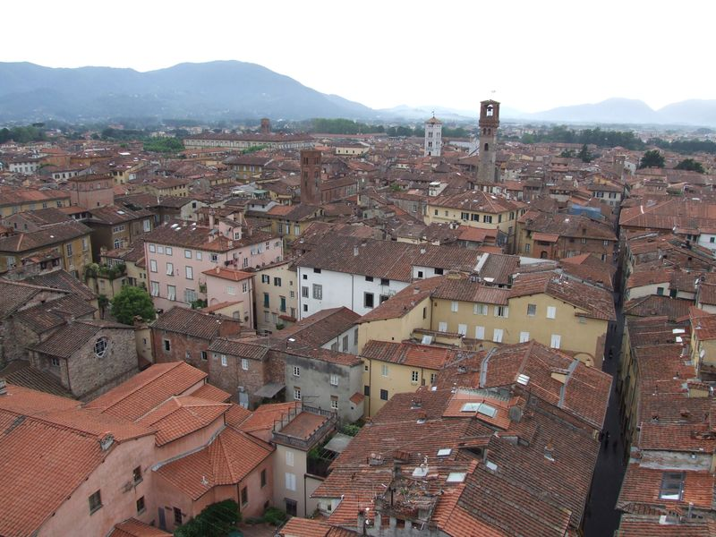 lucca-28