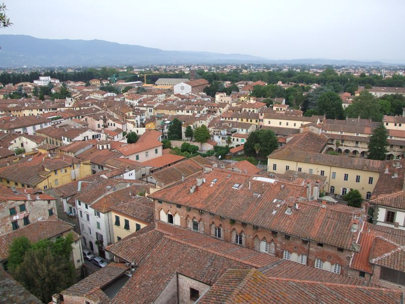 lucca-30