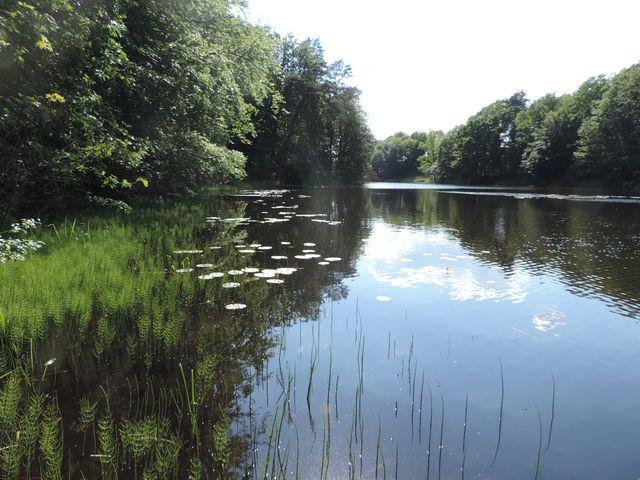 Jezioro Zatorek w Wisełce na Wolinie