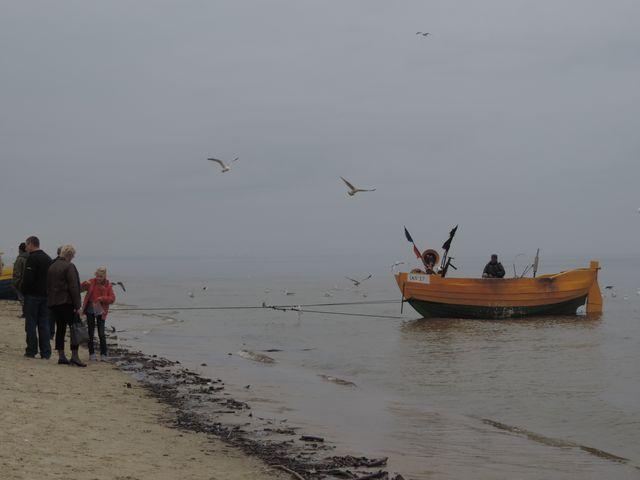łódź wyjeżdża na brzeg