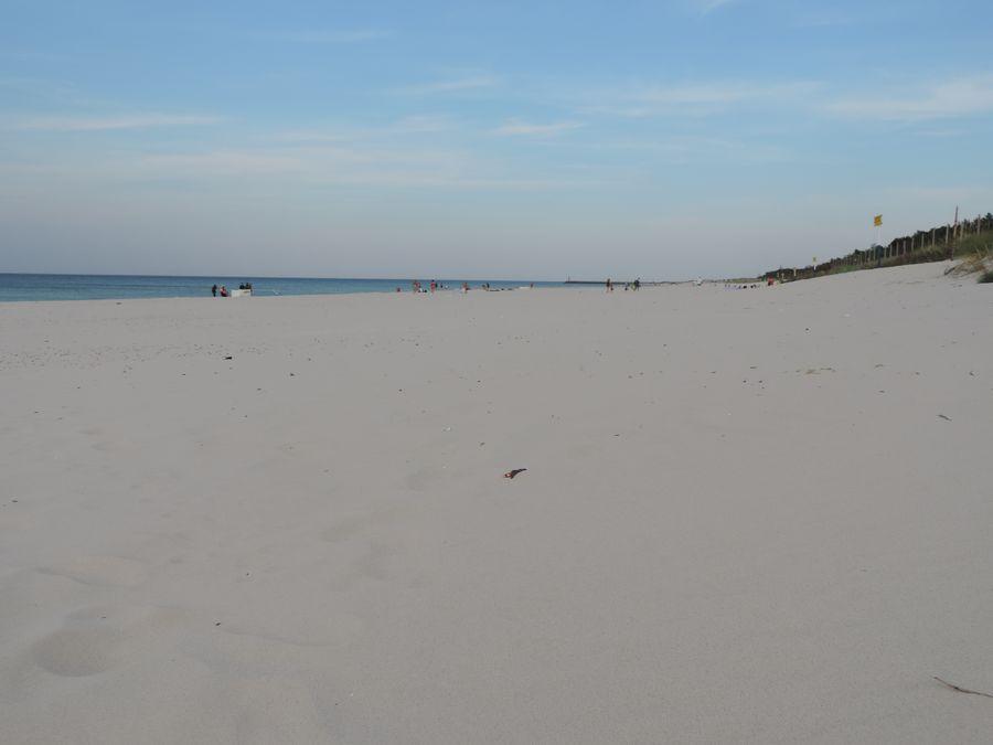 Bałtycka plaża niedaleko Rąbki